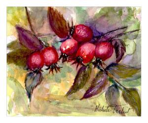 galerie-membre,peinture,fruits-rouges