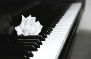 rosa pianoforte